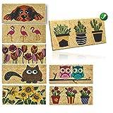 parpyon Zerbino Ingresso casa Divertente Vulcano Piccolo cm 53x23 Tappeto Antiscivolo entrata scalino per Interno da Esterno tappeti Moderni in Cocco (Cactus)