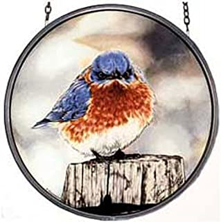 Best mad bluebird products Reviews