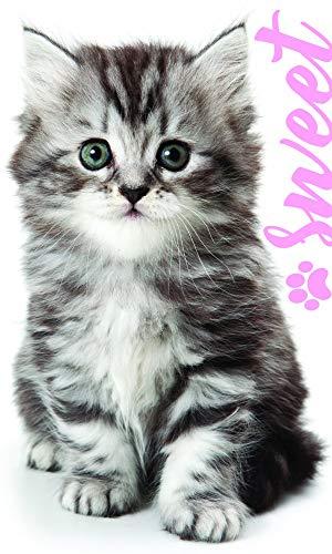 Katzen Baby Motiv Kinder-Handtuch 30 x 50 cm