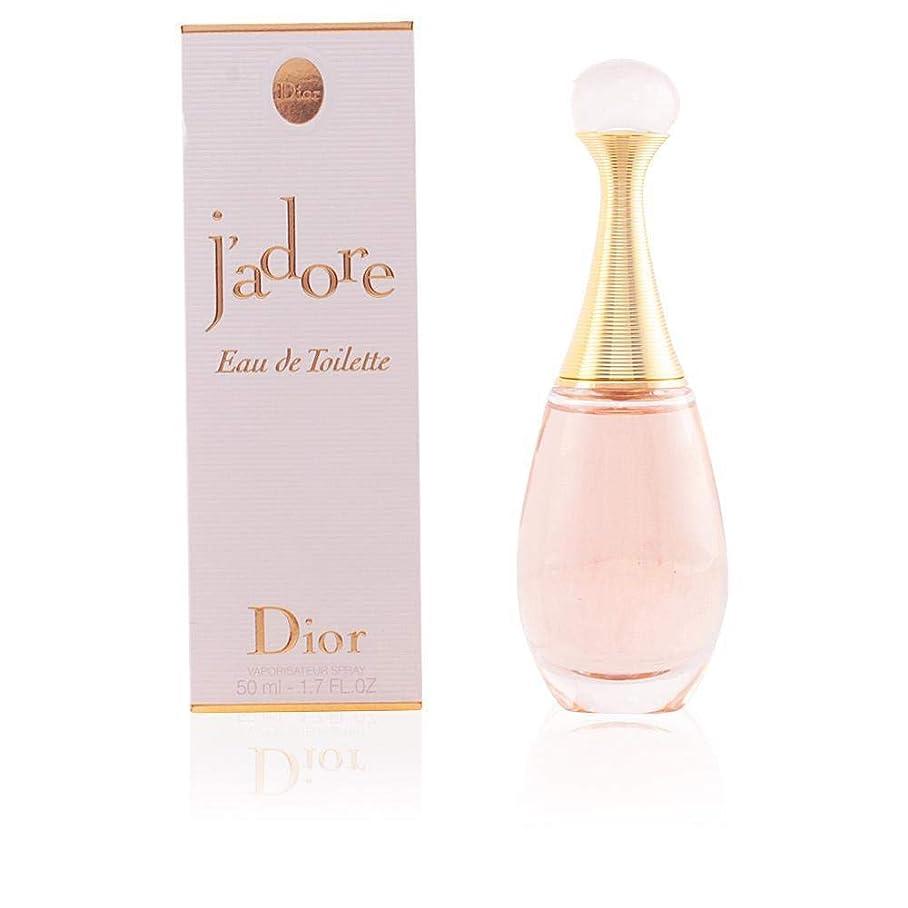 解決する風邪をひく表現Dior ジャドール オー ルミエール EDT 100ml [並行輸入品]