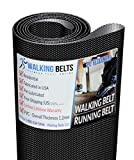 WALKINGBELTS Walking Belts LLC - 250161 NT T6.5S Treadmill Walking Belt 1ply + Free 1oz Lube