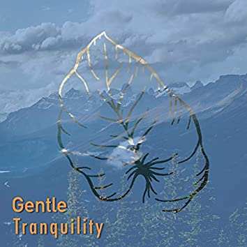 # Gentle Tranquility