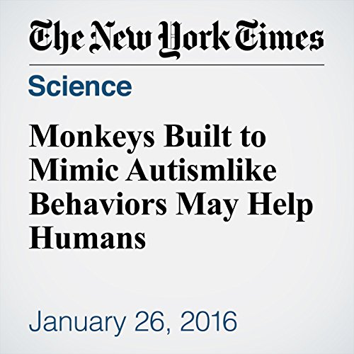 Monkeys Built to Mimic Autismlike Behaviors May Help Humans audiobook cover art