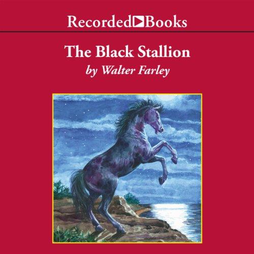 The Black Stallion cover art