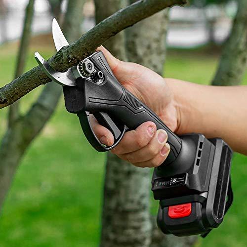 Professionnel sans Fil Électrique Sécateur, 21V Rechargeable 2Ah Batterie Au Lithium Propulsé Branche d'arbre Sécateur, Jardin, Rose, Fruit Pommier, Branches