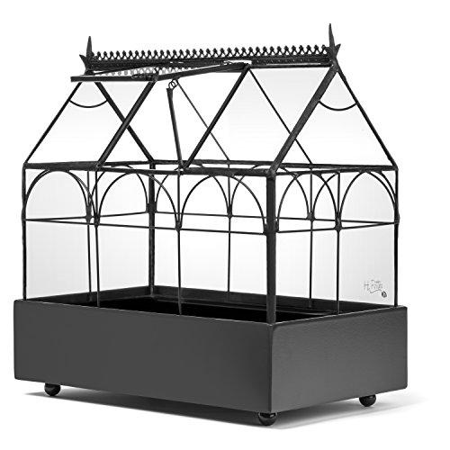 H Potter Glass Terrarium Plants Succulent Container Wardian Case Planter 65-1R