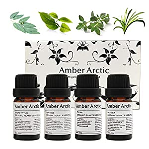 Top 4 Essential Oil Set (Thyme, Eucalyptus, Tea tree, Vetiver) - 100% Pure Natural Aromatherapy Essential Oil for Diffuser, Massage - 4 x 10ml