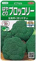 サカタのタネ 実咲野菜2501 はやどりブロッコリー ピクセル 00922501