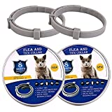 BUDOCI Pet Flea Collar Small Size Flea and Tick Prevention for Cats, 2 Pack Flea and Tick Collar for Cats, 38cm/15 inch, 8 Month Protection