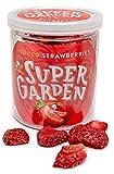 Supergarden fresa liofilizada a rodajas - Snack saludable - Producto 100% puro y natural - Apto para veganos - Sin azúcares, aditivos artificiales ni conservantes añadidos - Sin gluten - No OMG