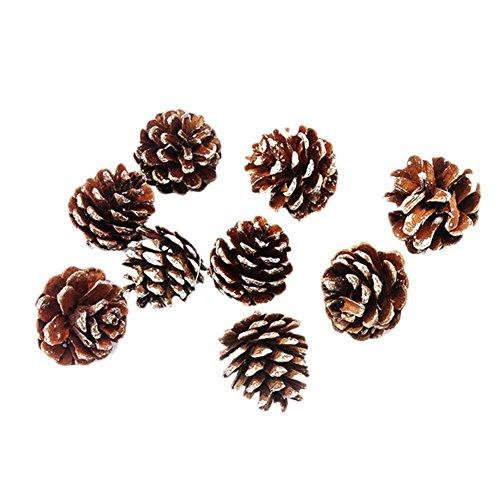 Kentop Lot de 9 pommes de pin naturelles, pommes de pin noire, pommes de mélèze de noël, décoration de Noël