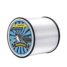 Mounchain Fil de pêche monofil en nylon transparent – Convient pour truite et carpe – 500 m
