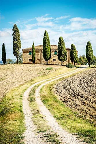 Bilderdepot24 Poster selbstklebend Toskana - Italien - 65x100 cm - Wandposter Tapete Motivtapete - grüne Landschaft mit Zypressen