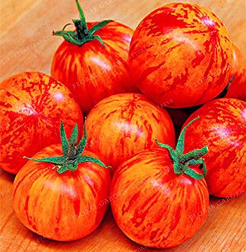 スウィート&ピリッTigerellaトマト。 2021のための40個の以上の新鮮なオーガニックの種子