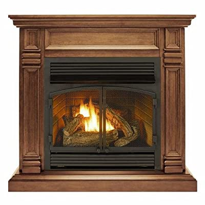 Duluth Forge DFS-400R-2GR Dual Fuel Ventless Gas Fireplace-32,000 BTU, Remote Control, Toasted Almond from Factory Buys Direct