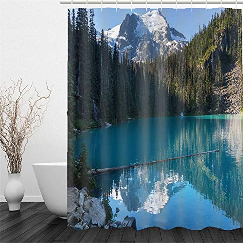 Chickwin Duschvorhang Wasserdicht Antischimmel, Duschvorhänge Polyester Waschbar Bad Vorhang mit 12 Duschvorhangringe - 3D Landschaft Motiv Badewanne Vorhang (200x240cm,Schnee Berg)