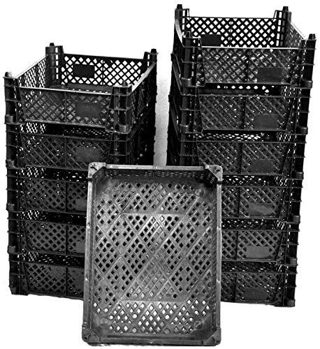 Moos-Design Plastikkisten 1-12 STK. (ab 1,99 €/Stück) Stapelkisten zur Lagerung Kunststoffkisten Obstkisten Gemüsekisten (12)