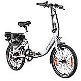 Zündapp Z110 20 Zoll E Bike Faltrad Damen Herren Elektrofahrrad klappbar Fahrrad Elektro Klapprad Ebike Pedelec E-Bike Erwachsene Klappfahrrad (schwarz, 33 cm)