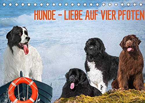 Hunde - Liebe auf vier Pfoten (Tischkalender 2022 DIN A5 quer)