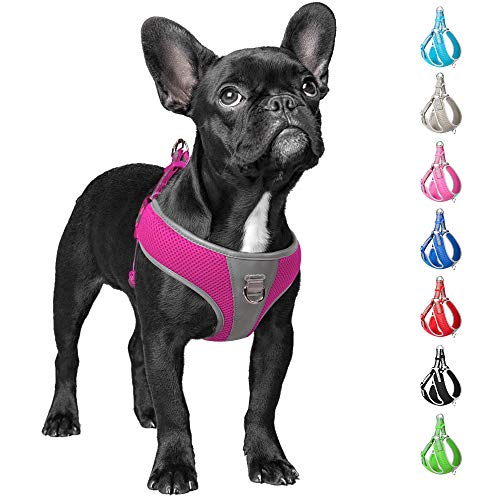 Fida Step-in Dog Harness, Superior Reflective Puppy Vest Harness- All Weather Air Mesh, Adjustable Harness for Small…
