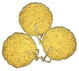 Exfoliating Foam Sea Sponge Natural Feel (Medium (set of 3))
