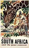 Poster Südafrika, Giraffe, Reproduktion, Format Size, 50 x