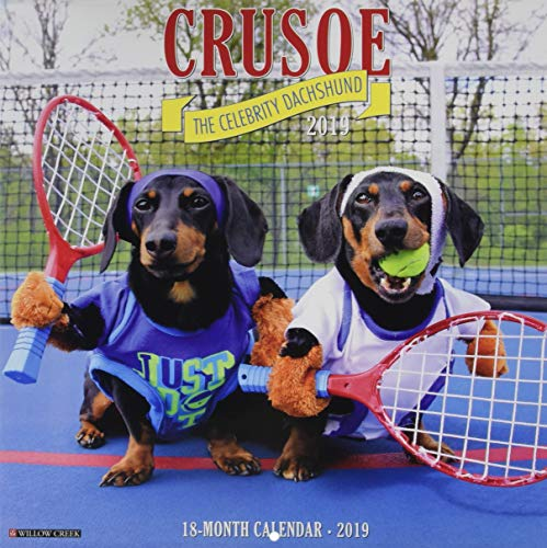 Crusoe the Celebrity Dachshund 2019 Wall Calendar (Dog Breed Calendar)