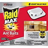 Raid Ant Killers - Best Reviews Guide