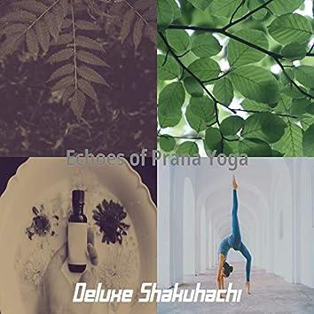 Echoes of Prana Yoga