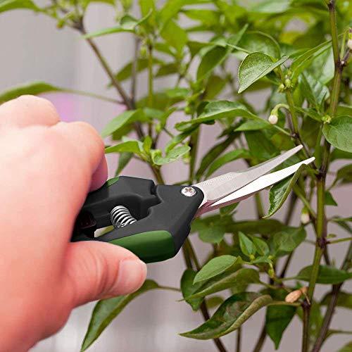 LDK Gardening Hand Pruner Pruning Snip