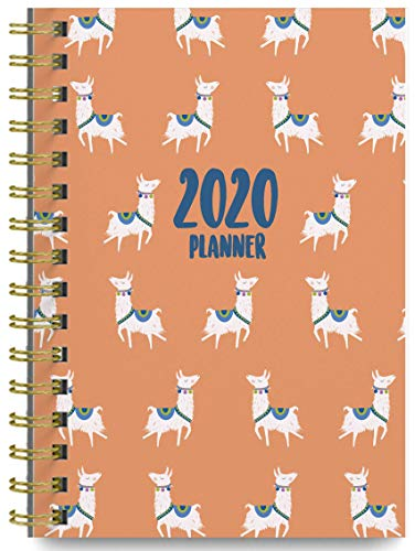 2020 Llamas Soft Cover Academic Year Day Planner Book by Bright Day, Weekly Monthly Dated Agenda Spiral Bound Organizer, September 2019 to December 2020 6.25 x 8.25 Inch,