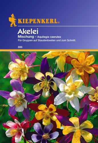 Kiepenkerl Akelei-Mischung