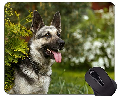 Natural Rubber Gaming Mouse Pad Printed with Pet German Shepherd Dog - Stitched Edges
