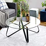 Table Basse en Verre Trempé,Table de Salon,Table de Canapé Minimaliste Moderne,Table D'appoint Ronde,avec Grand Plateau,Protection du Plancher, Armature Métallique Rigide,Montage Facile,80* 80 * 40cm