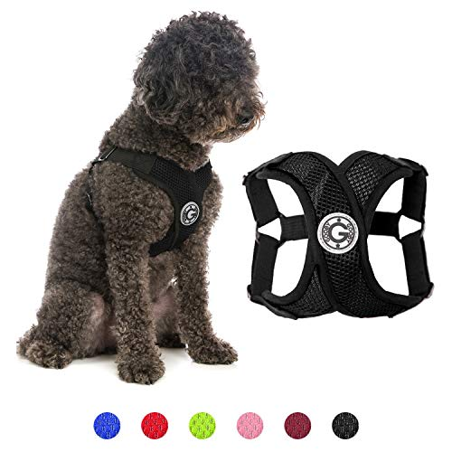 Gooby Dog Harness - Black, Small - Comfort X Step-in Small Dog Harness with Patented Choke-Free X Frame - Perfect on The Go Easy Walking Harness for Small Dogs or Cat Harness