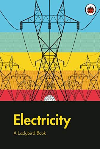 A Ladybird Book: Electricity (English Edition)