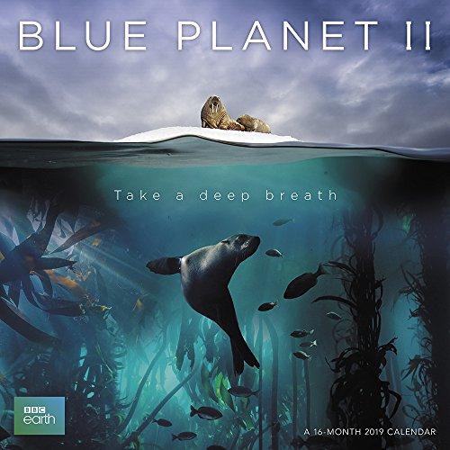 Calendario de pared 2019 Blue Planet 2019, paisajes de ACCO Brands