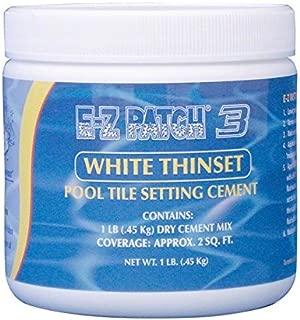 E-Z Patch 3 White Thinset Pool Tile Repair Cement 1 lb.