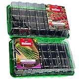 KliKil Invernadero pequeño Kit huerto Urbano con 2 semilleros y 2 Sobres de Semillas seleccionadas Blumen de Tomates Cherry y Cebollino