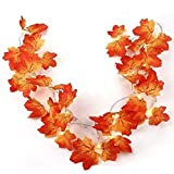 Twinkle Star Thanksgiving Decoration Fall Lights, 2...
