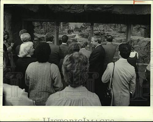 1986 Press Photo Visitors at Burnet Park Zoo Exhibit Window - sya03910