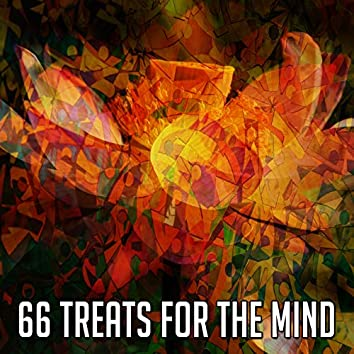 66 Treats for the Mind
