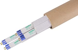 Lightingwise 2 FT 6500K T5 HO Fluorescent Grow Light Bulbs - Pack of 1,4,8,20,40 (4, 6500k - Blue - Veg)