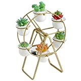 Youfui Ferris Wheel Plant Stand with 6 Planters Succulent Pots for Home Office Desk Decoration (Gold)