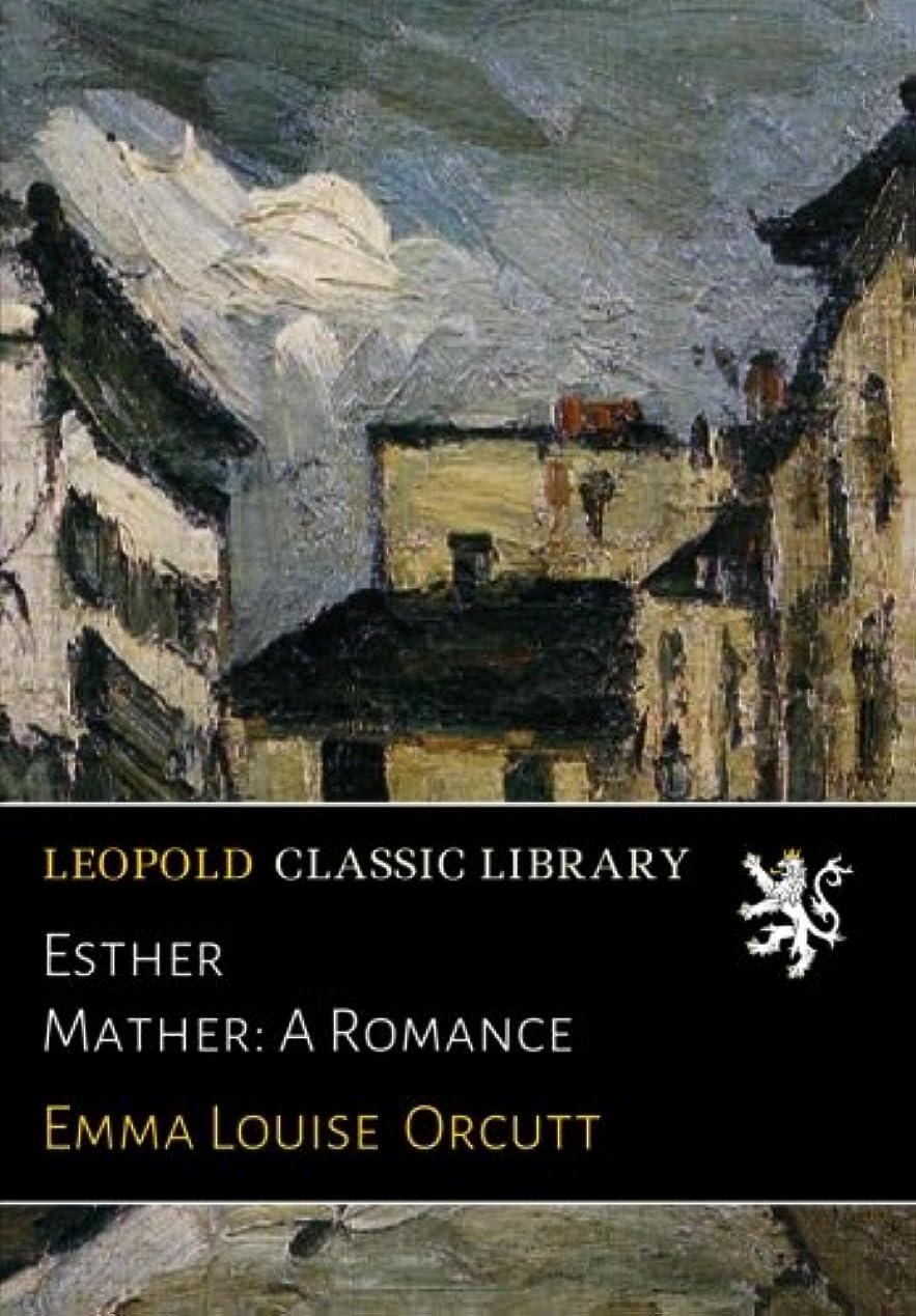 仮定、想定。推測文字構想するEsther Mather: A Romance