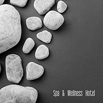 Spa & Wellness Hotel - Great Collection of New Age Melodies Which are Great as a Background for Beauty Treatments, Relaxing Massage and Healing Baths in Resorts