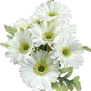 FiveSeasonStuff Real Touch Gerbera Daisy Artificial Flowers Arrangement & Wedding Bouquet (7 Floral Stems, Spring White)