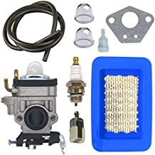 FitBest Carburetor with Air Filter Tune Up Kit for Walbro WYK-192 WYK-192-1 Echo PB651H PB651T PB751 PB-755 PB-755H PB-755T Replaces A021000811 A021000810 Backpack Blower Carb