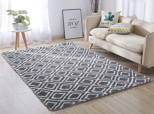 ACTCUT Super Soft Indoor Modern Shag Area Silky Smooth Rugs Fluffy Anti-Skid Shaggy Area Rug Dining Living Room Carpet 5.3' x 7.3' (Grey & White)