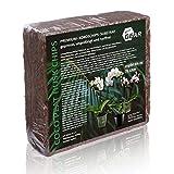 your GEAR Kokoserde 75 L - 5 kg grobe oder feine Blumenerde - gepresste Aussaaterde aus Kokosfasern ungedüngt torffrei gorbkörnig oder feinkörnig zur Auswahl